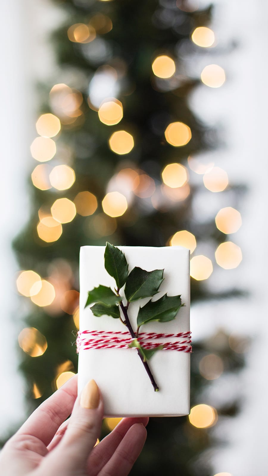 les paquets cadeau pour Noël chez Poisson Plume