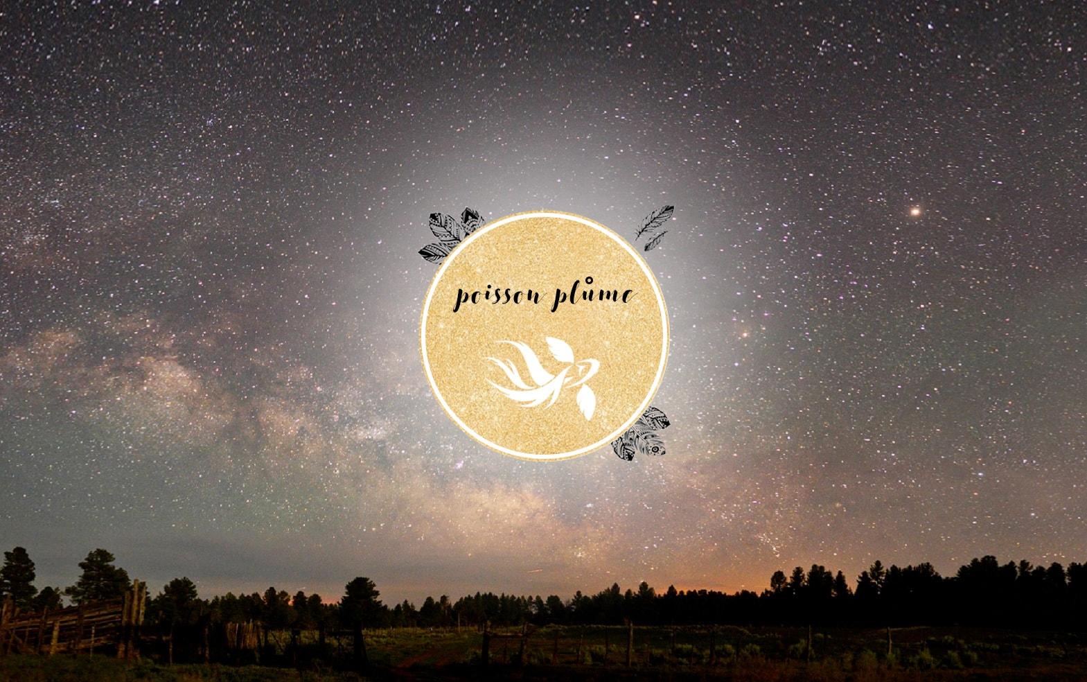 Bijoux de créateurs Poisson Plume